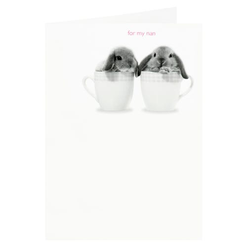 Bunnies in Teacups Nan Mother's Day Card