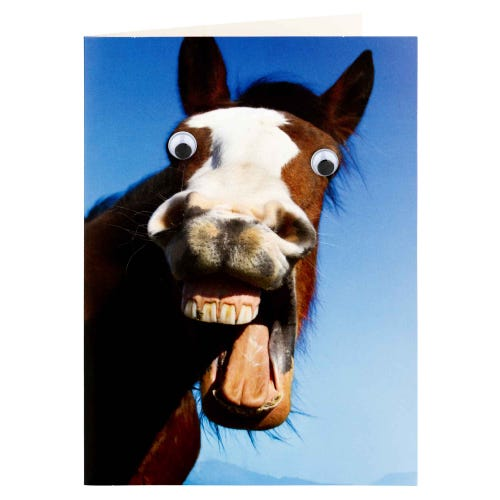 Horse With Googly Eyes Blank Greeting Card