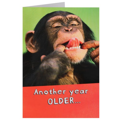 Who Gives A Monkeys Birthday Card