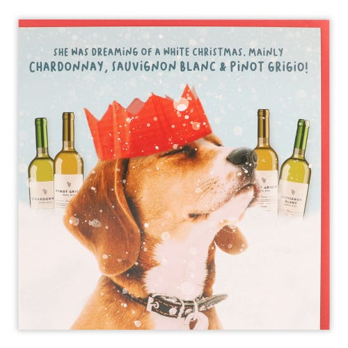 Dog in a paper hat with bottles of wine