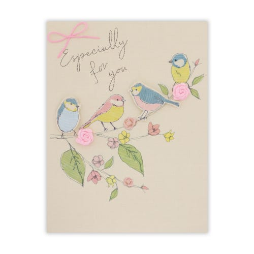 Crafted by Clintons Stitchy Birds