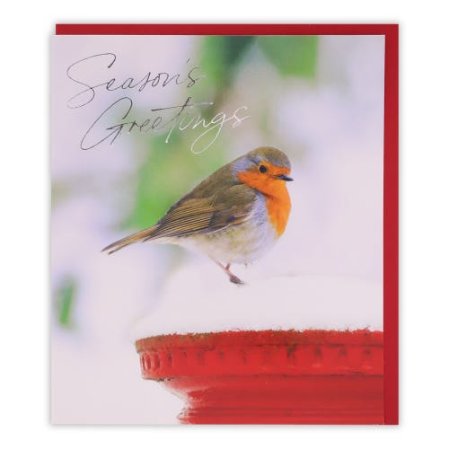 Photo Robin General Christmas Card