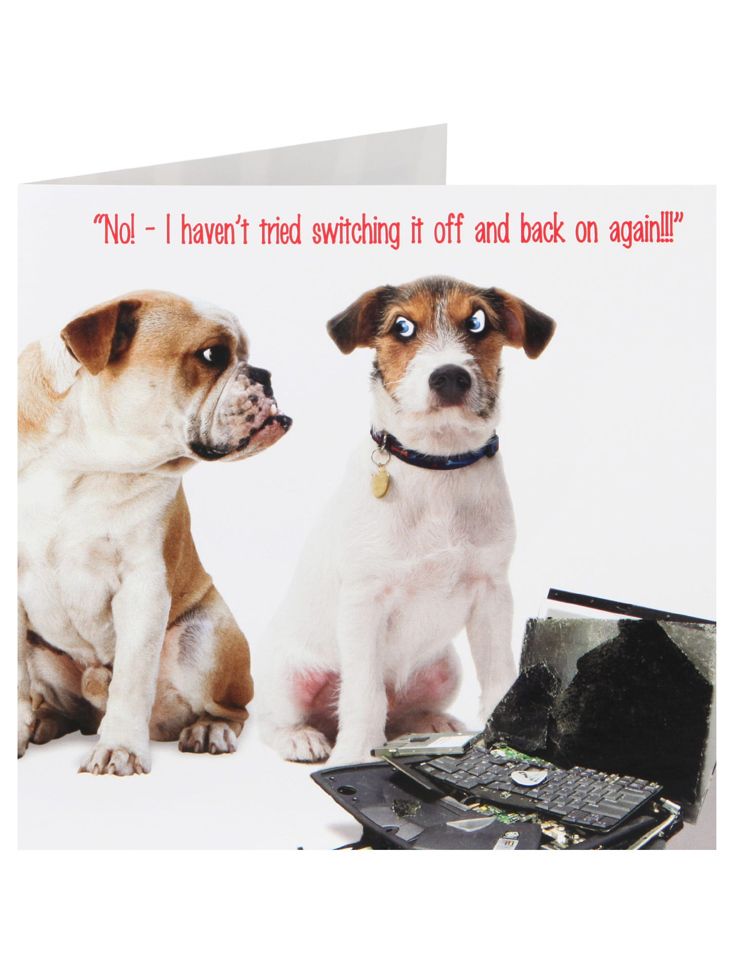 Dogs With A Damaged Laptop Humour Birthday Card <p>Ensure they have a smile on their face with this humorous card. Wishing them a lovely Birthday this year.</p>
