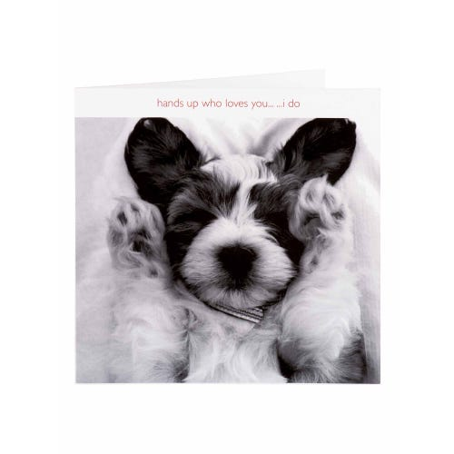 Cute Puppy Hands Up Who Loves You Valentine's Card