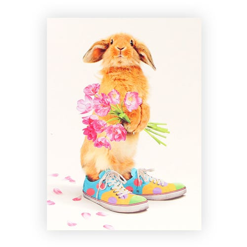 Bunny in Trainers Easter Card