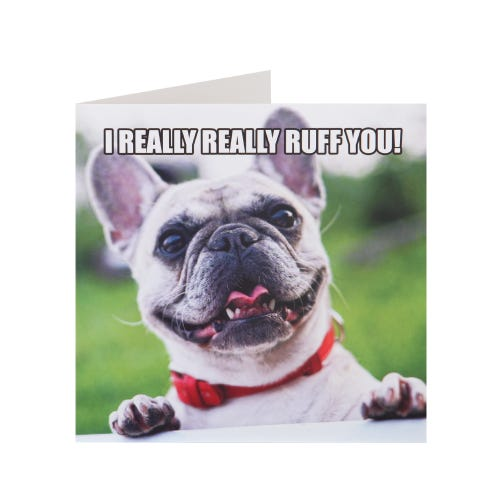 Really Really Ruff You Valentine's Day Card